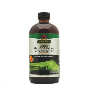 Liquid Glucosamine Chondroitin with MSM - 480ml