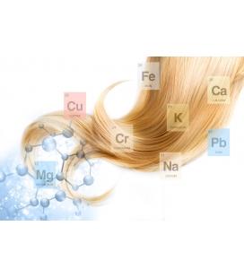 Ανάλυση Μαλλιών για Ιχνοστοιχεία και Βαρέα Μέταλλα