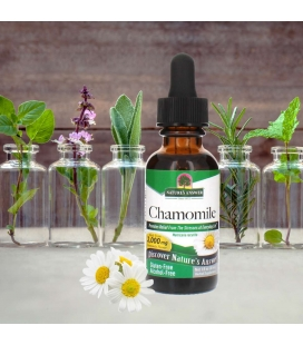 Chamomile Flower 30ml