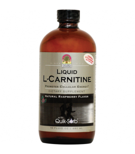 Liquid L-Carnitine - 480ml