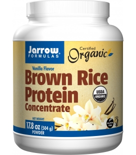 BROWN RICE PROTEIN 459g