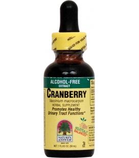 Cranberry - 30ml