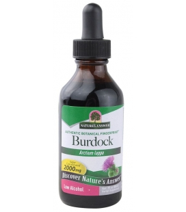 Burdock Root 30ml