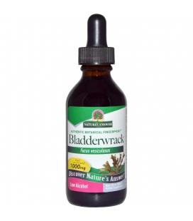 Bladderwrack Herb - 1 oz