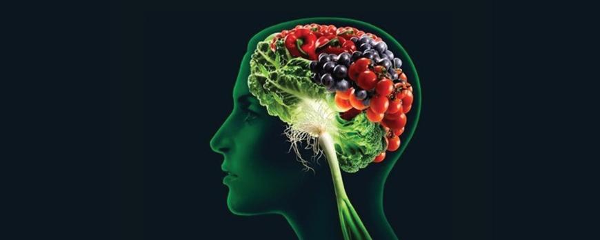 Η επιρροή του εγκεφάλου στις διατροφικές μας συνήθειες