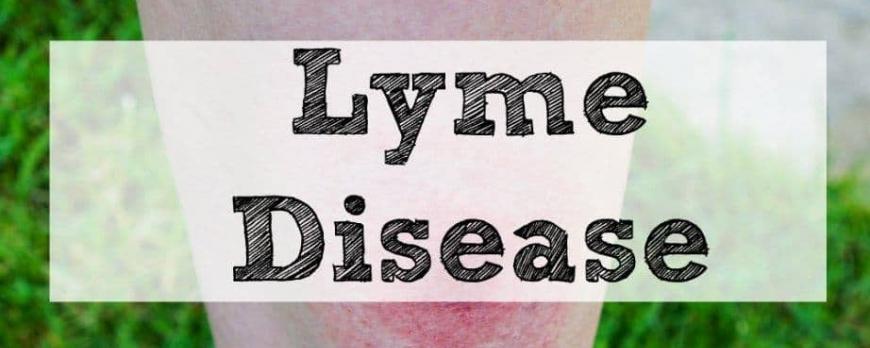 Νόσος του Lyme-Μπορρελίωση