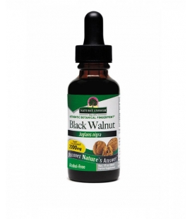 Black Walnut - 30ml