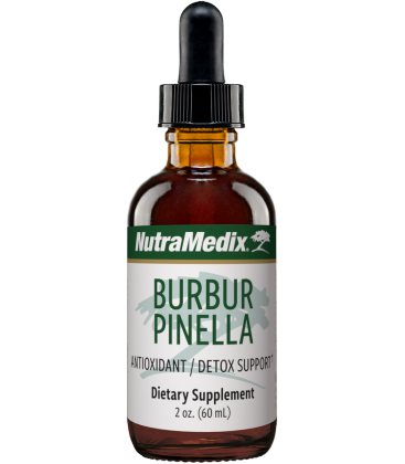 Burbur Pinella - Detox Brain/Nerve Cleanse 60ml